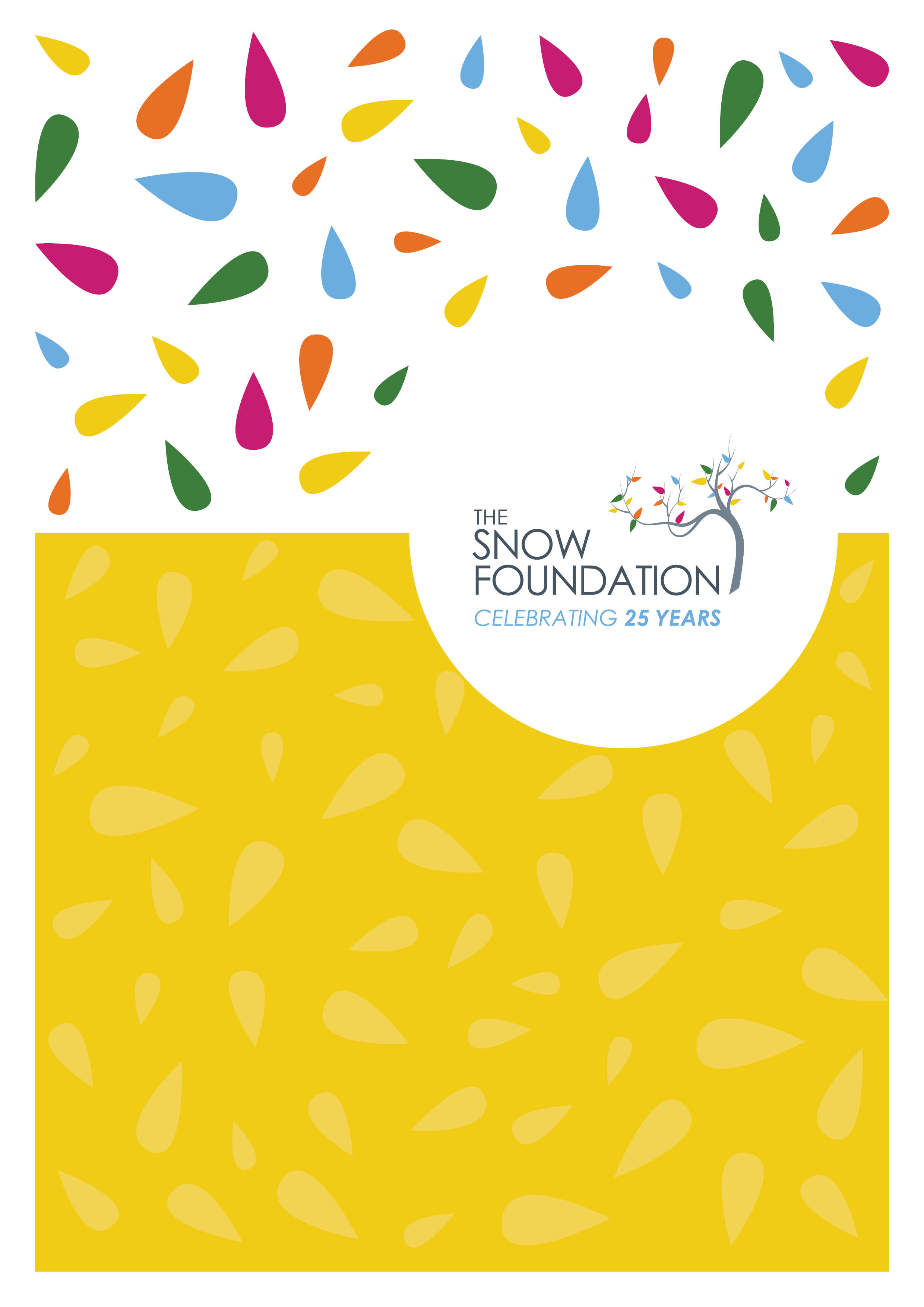 The Snow Foundation Celebrating 25 Years Cover